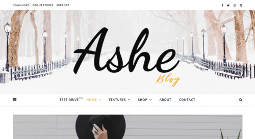 Ashe Personal WordPress Blog Theme