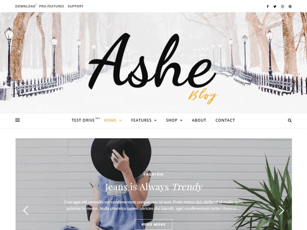 Ashe Personal WordPress Blog Theme