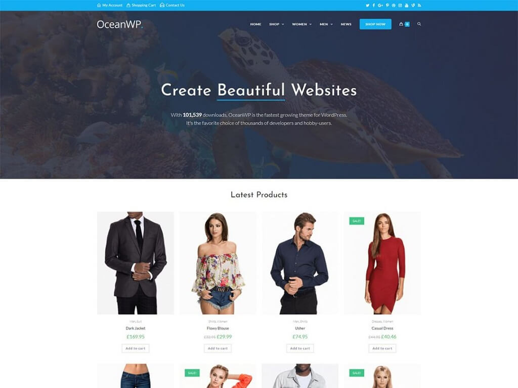 OceanWP Responsive WordPress theme