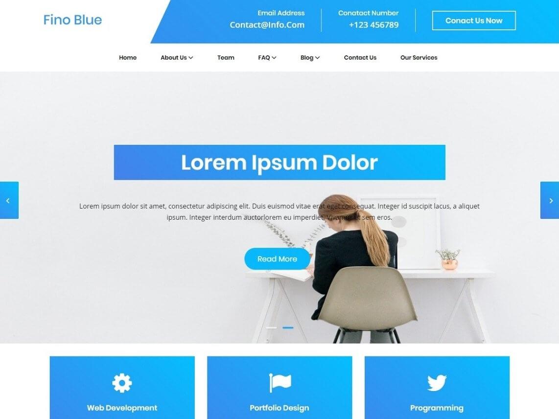 Blue Fino